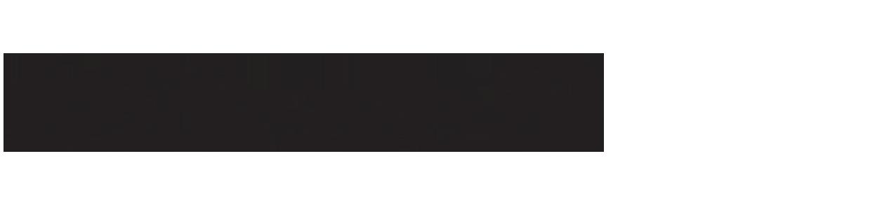 לוגו iPhone 13